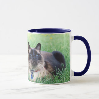 Merlin Blue Plain Mug