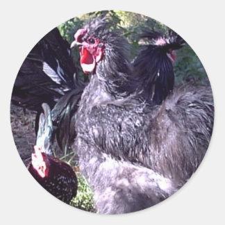 """""""Merlin"""" Blue Silkie Bantam Rooster Round Stickers"""