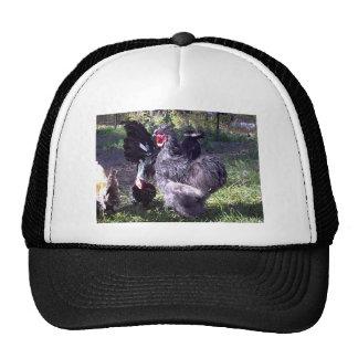 """""""Merlin"""" Blue Silkie Bantam Rooster Trucker Hat"""