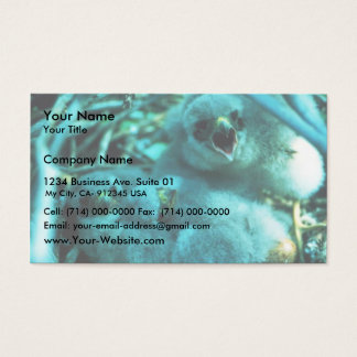 Merlin chicks business card