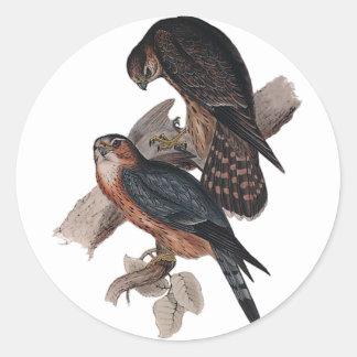Merlin Classic Round Sticker