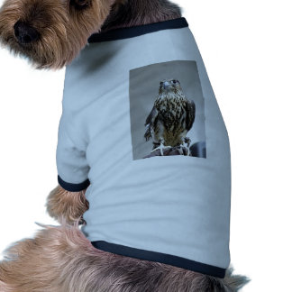 Merlin Doggie Shirt