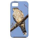 MERLIN iPhone 5 Case-Mate PROTECTOR