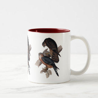 Merlin or Pigeon Hawk Two-Tone Coffee Mug