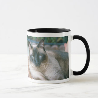 Merlin Rescue Brown Mug