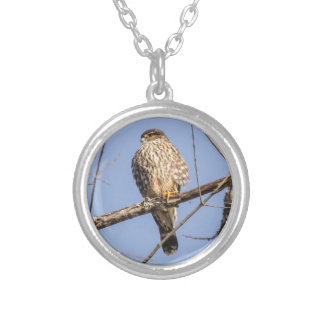 Merlin Silver Plated Necklace