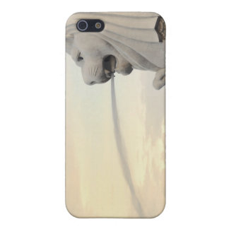 Merlion Cases For iPhone 5