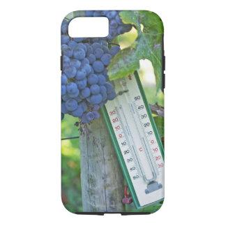 Merlot grapes at Chateau la Grave Figeac, a iPhone 7 Case