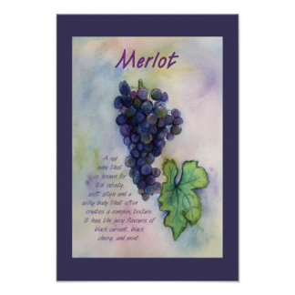 Merlot Red Wine Grapes Art Poster Print