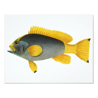 """Mero de los pescados de la vida marina del invitación 4.25"""" x 5.5"""""""