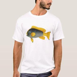 Mero de los pescados de la vida marina del playera