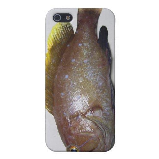 Mero de Yellowedge iPhone 5 Fundas