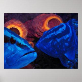 Meros - azul póster
