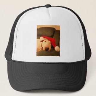 merra christmas santa hat