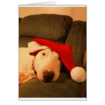 merra christmas santa hat greeting cards