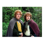 Merry and Peregrin Postcard
