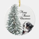 Merry Berner Christmas Ornaments
