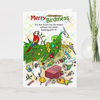 Merry Birdmess Holiday Card
