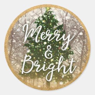 Merry & Bright Christmas Holidays Classic Round Sticker