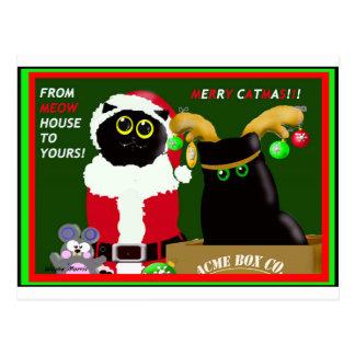 Merry Catmas Card