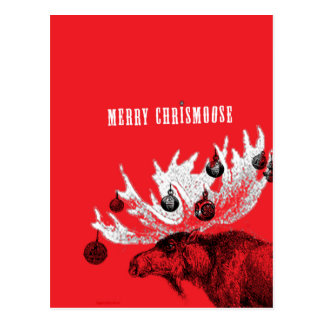 merry chrismoose postcard
