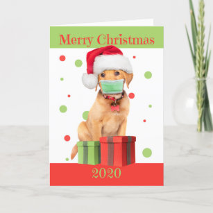 Puppy For Christmas 2020 Puppy Christmas Cards   Zazzle