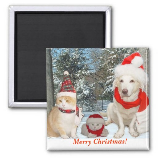 Merry Christmas! 2 Inch Square Magnet