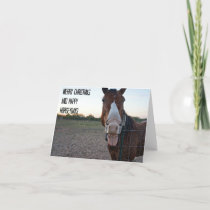Merry Christmas and Happy Horseydays Holiday Card