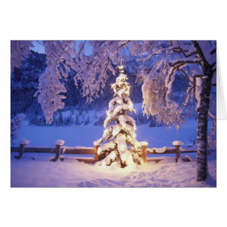Merry Christmas and Happy New Year Card