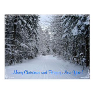 Merry Christmas and Happy New Year Post Card