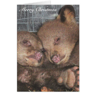 Merry Christmas - Ata & Awina Card