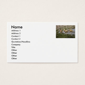 Merry Christmas Baby Geese Business Card
