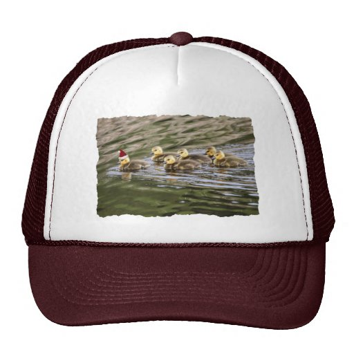 Merry Christmas Baby Geese Mesh Hats