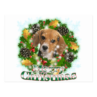 Beagle Christmas Cards - Invitations, Greeting & Photo Cards | Zazzle