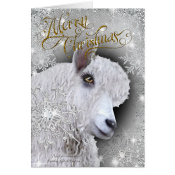 Merry Christmas Beautiful Angora Goat | BabyGirl Card
