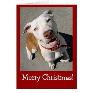 Merry Christmas Best Freind Card