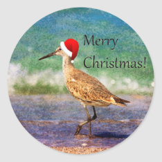 Merry Christmas Bird In Santa Hat On Beach Sticker at Zazzle