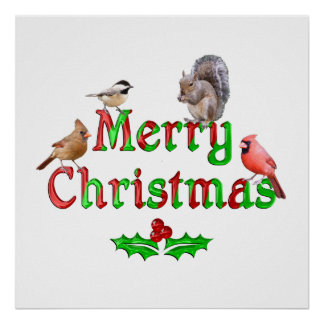 Merry Christmas Birds and Squirrel Poster