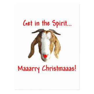 Merry Christmas Boer Goat Postcard