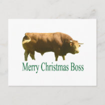 Merry Christmas Boss Limousin Bull Holiday Postcard