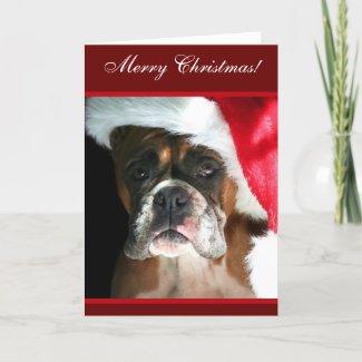 Merry Christmas Boxer Dog greeting Card