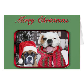 merry christmas boxers greeting card