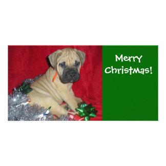 Merry Christmas - Bullmastiff Card
