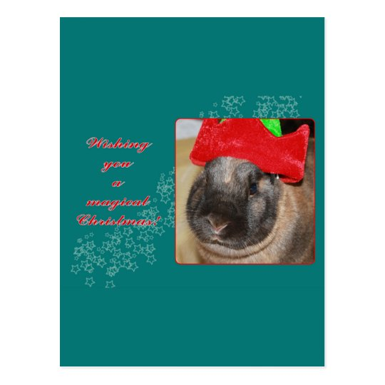 Merry Christmas Bunny Rabbit with Hat - Magical Postcard