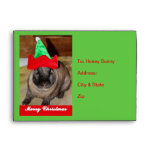 Merry Christmas Bunny With Holiday Rabbit Hat Gift Envelope