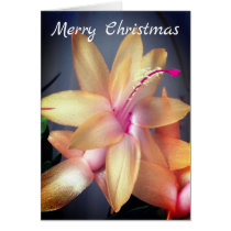 *~* Merry Christmas Cactus Flower Customize Card
