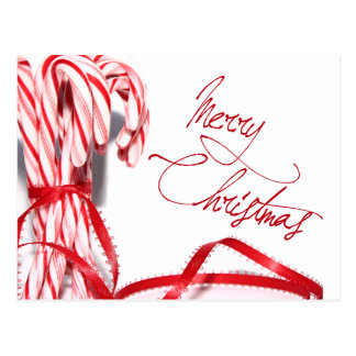Merry Christmas Candy Canes Postcard