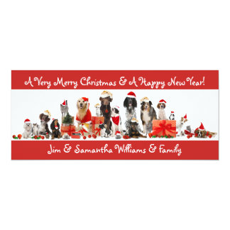 Merry Christmas Card  - Dog & Pet Lovers