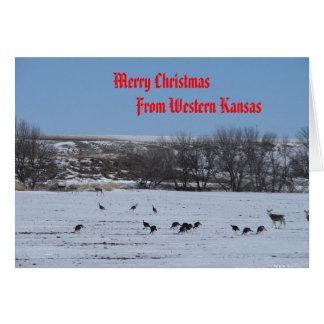 Merry Christmas                 ... Cards