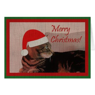 Merry Christmas Cat Card